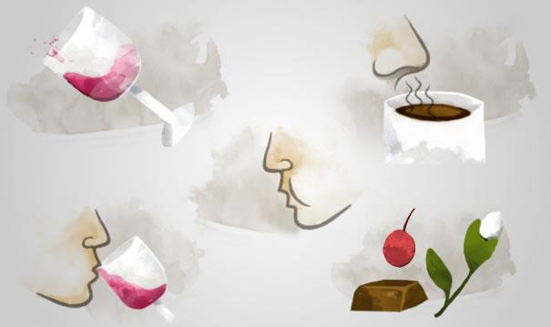 Kahve ve şarap! İki farklı tad, iki benzer üretim 3