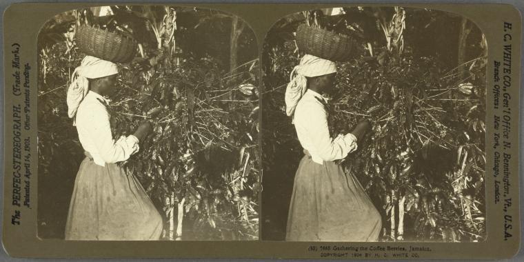 New York Halk Kütüphanesi görsel arşivini açtı 4
