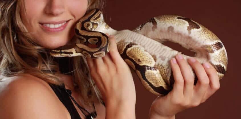 yılanlı kafe